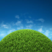 Grass with sky — Stock Photo