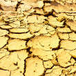 The dried up cracked earth — Stock Photo #5433618