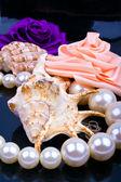 Lavabo rose et perles — Photo