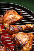 Organic roasted chicken parts on a barbecue — Stock Photo