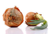 Two no longer edible onions on white background — Stock Photo
