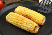 Grilled corn on the cob in a pan — Stock Photo