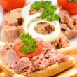 Stock Photo: Tuna toast with tomato, parsley and onion rings