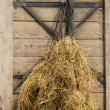 Stock Photo: Hay as forage hung in net