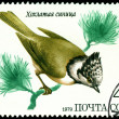 Vintage postage stamp. Tomtit. — Stock Photo