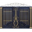 Modern  forged  gates with ornament. - Stock Photo