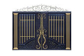 Modern forged gates with ornament. — Stock Photo