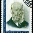 Vintage postage stamp. Academician  A. N. Krylov. - Stock Photo