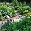 Backyard Garden - Stock Photo