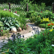 Stock Photo: Backyard Garden