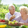Mature couple — Stock Photo #6642050