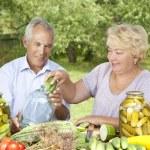 heureux couple de personnes âgées — Photo