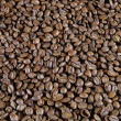Light Roast Beans - Stock fotografie