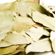 Bay Leaves - Stock Photo