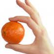 Simply Orange - Stock Photo