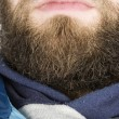 Beard Close Up - Stock Photo
