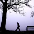 Depressed in Fog - Stock Photo