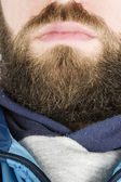 Beard Close Up — Stock Photo