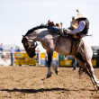 Rodeo Cowboy — Stock Photo #5682575