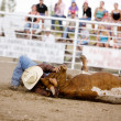 Stock Photo: Steer Wrestling
