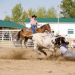Steer Wrestling — Stock Photo #5682609