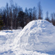 Igloo in Winter — Stock Photo #5684423