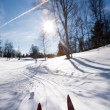 Cross Country Skiing Motion - Stock Photo