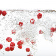 Fresh Raspberries in Water - Stock Photo
