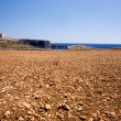 Comino Landscape - Stock Photo