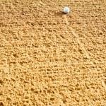 Golf Ball in Bunker — Stock Photo