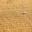 Golf Sand Trap - Stock Photo