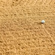 Golf Sand Trap — Stock Photo