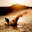 Water Ski Silhouette - Stock Photo