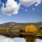 Fall Landscape Geithus — Stock Photo
