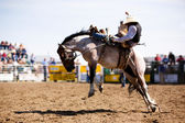 Rodeo Cowboy — Stock Photo