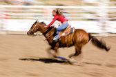 Speed Horse — Stock Photo