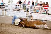 Steer Wrestling — Stock Photo