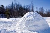 Igloo in Winter — Stock Photo