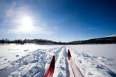 Cross Country Skiing — Stock Photo
