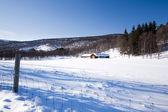 Cabana na montanha inverno — Foto Stock