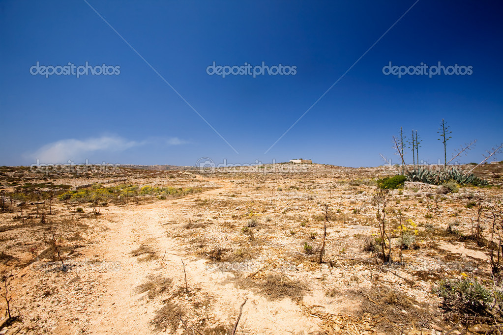 A very dry desert landscape, comino malta — Stock Photo #5685135