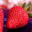Strawberry Outdoor - Stock Photo