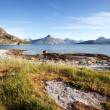 Stock Photo: Coast Norway