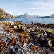 Coast Norway — Foto Stock
