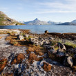 Coast Norway — Stock Photo