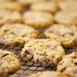 Fresh Cookies - Stockfoto