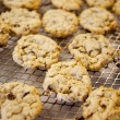 Fresh Chocolate Chip Cookies - Stockfoto