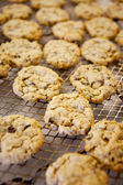 Fresh Chocolate Chip Cookies — Zdjęcie stockowe