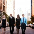 Business Team — Stock Photo #5701991