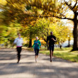 Park Jogging — Stock Photo #5703068